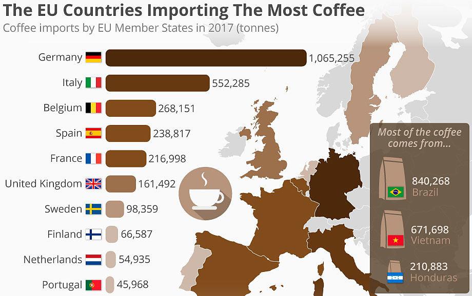 Регионы, выращивающие кофе и его сорта
